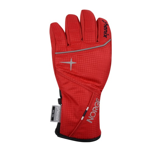 [18/19] NORWAY TEAM KID'S GLOVE DR (PS8G8GL70)